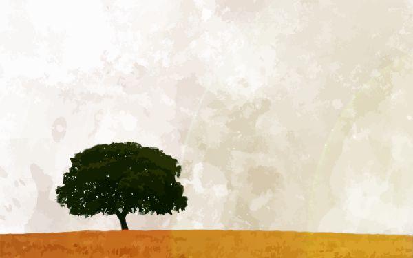 edubuntu-artwork — Темы и работы edubuntu
