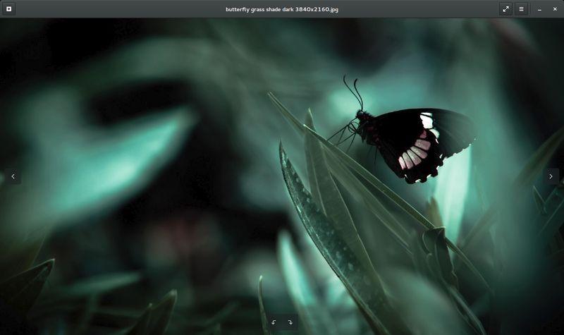 eog — Программа просмотра изображений Eye of GNOME