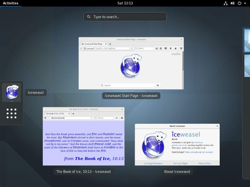 xul-ext-iceweasel-branding — Брендинг для Firefox, чтобы применить имя и изображения Iceweasel